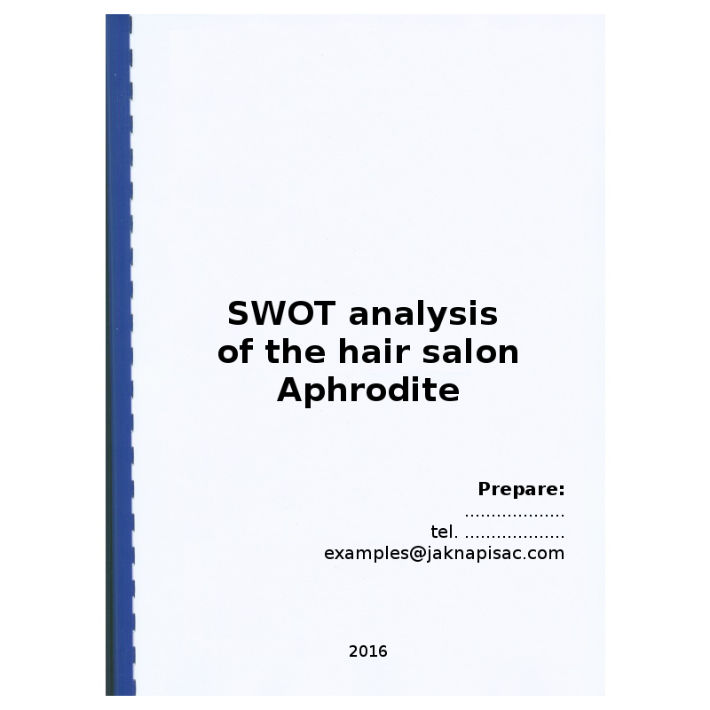 SWOT analysis of the hair salon Aphrodite - example